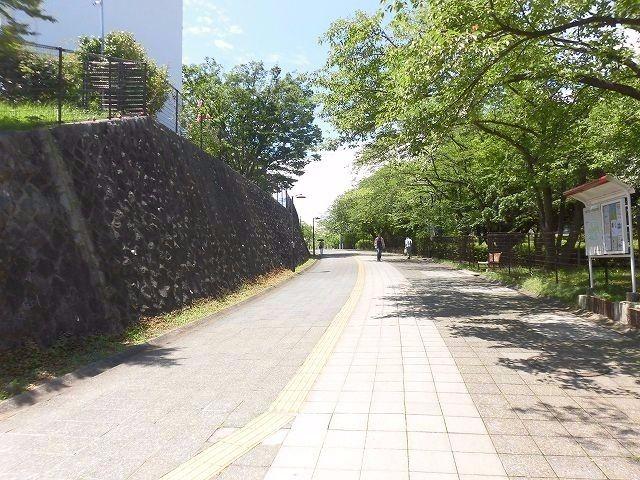 たまプラーザ団地の遊歩道の様子です。