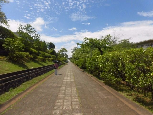 たまプラーザ団地遊歩道