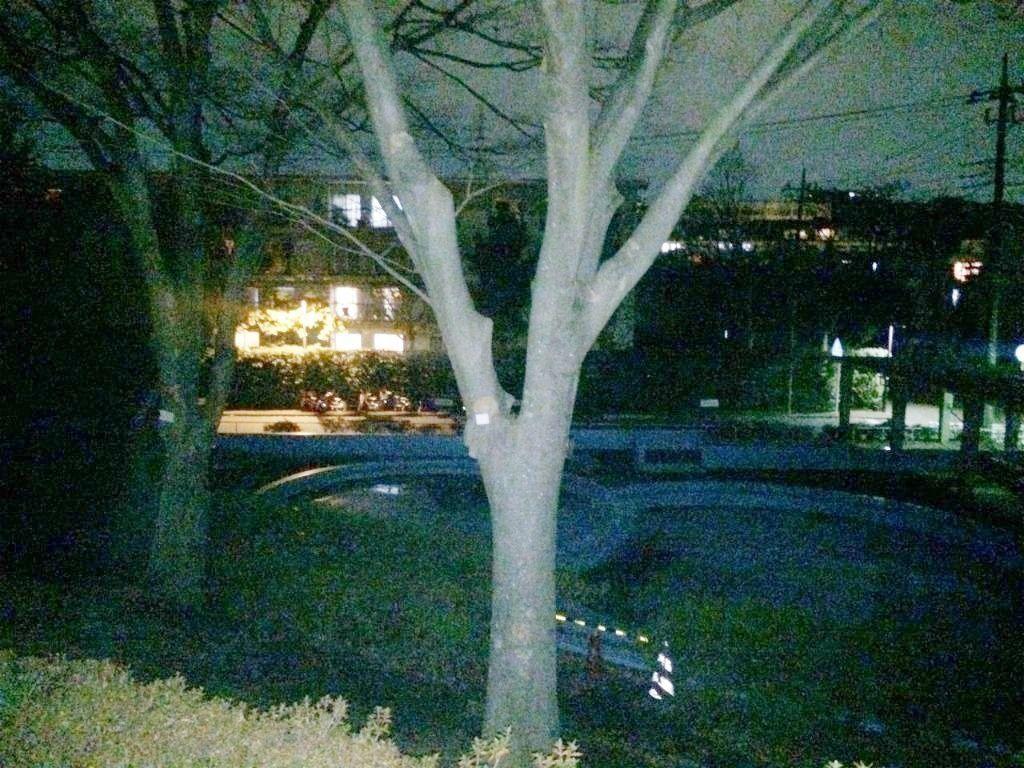 たまプラーザ団地の夜景