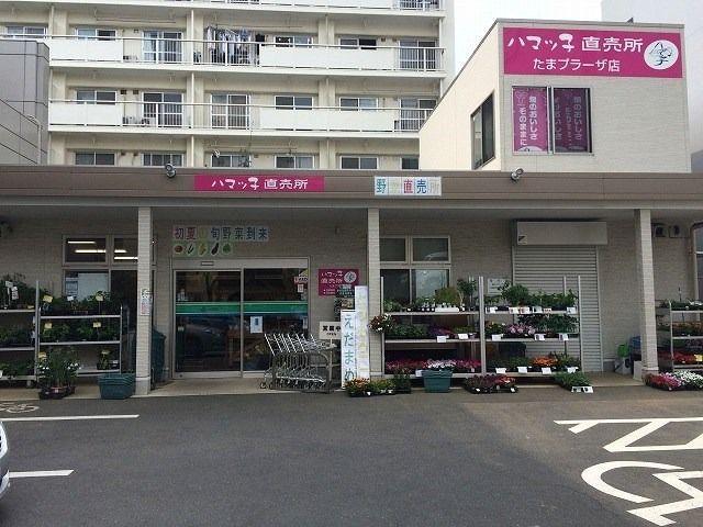 たまプラーザ駅前「ハマッ子」直売所