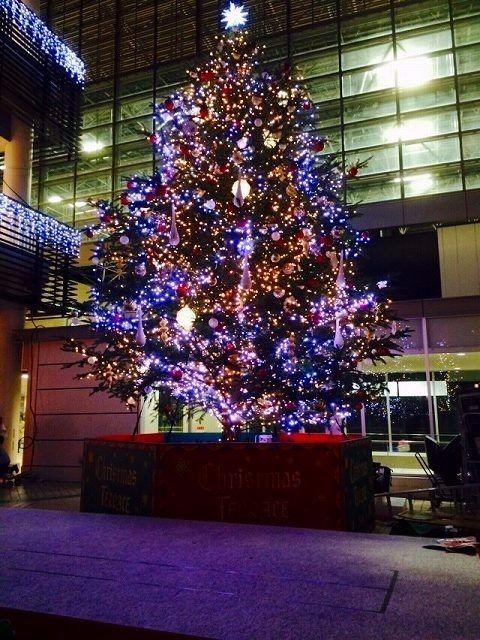 2014年 クリスマス・ツリーのたまプラーザ駅北口